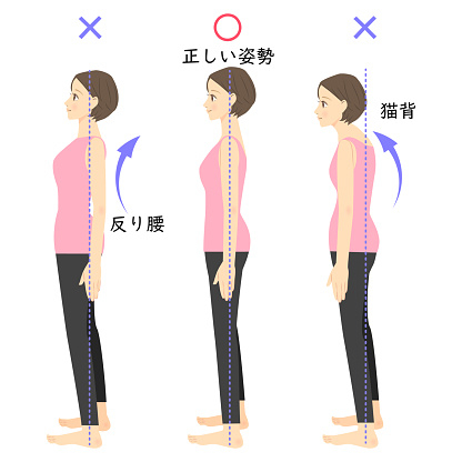 姿勢の種類